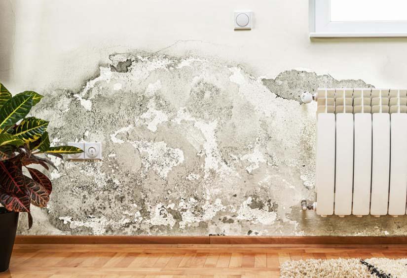 evita la humedad en el hogar