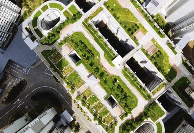 Cubiertas sostenibles y eficientes